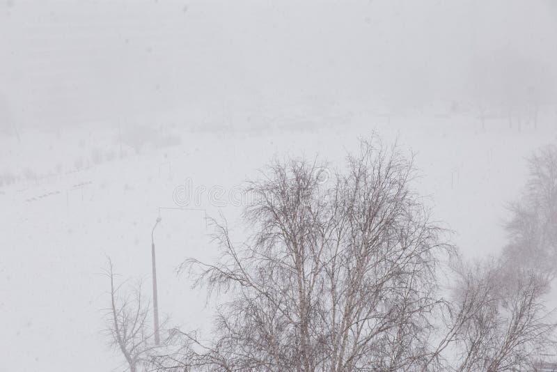 Paisaje Nevado - opinión de la nevada del abejón aéreo de la ventana tirado con visibilidad pobre fotografía de archivo libre de regalías