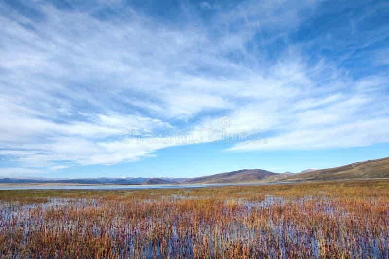 Paisaje otoñal del lago fotografía de archivo
