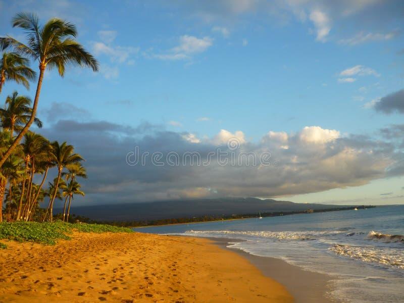 Paisaje pacífico de la playa imagenes de archivo