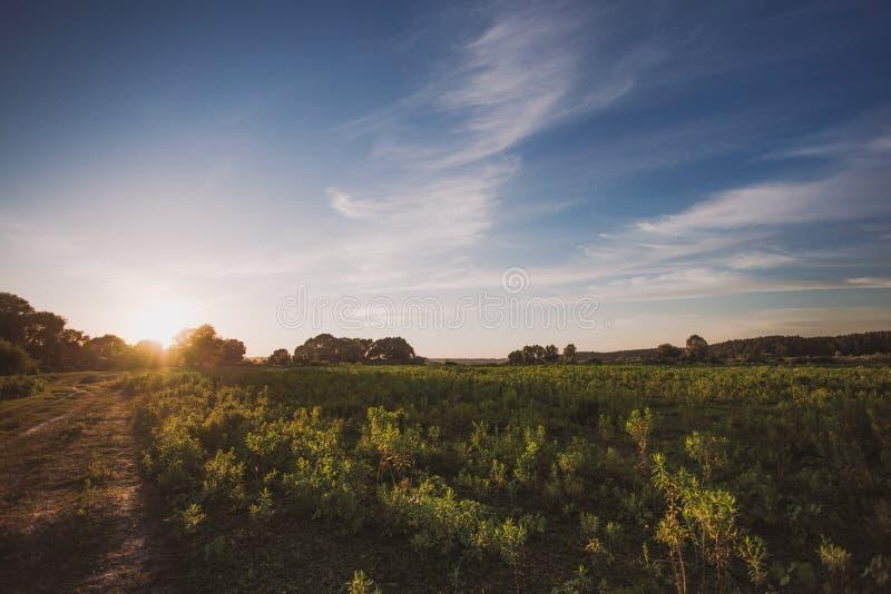 Paisaje pacífico escénico del campo con puesta del sol o salida del sol imagenes de archivo