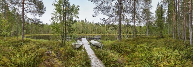 Paisaje panorámico de Finlandia con el bosque y el lago Enviro finlandés imagenes de archivo