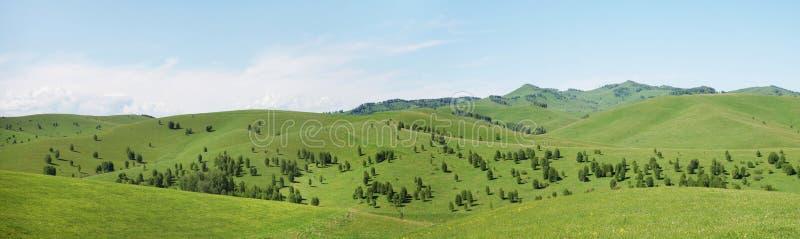 Paisaje panorámico montañoso hermoso del verano con las colinas herbosas verdes foto de archivo libre de regalías