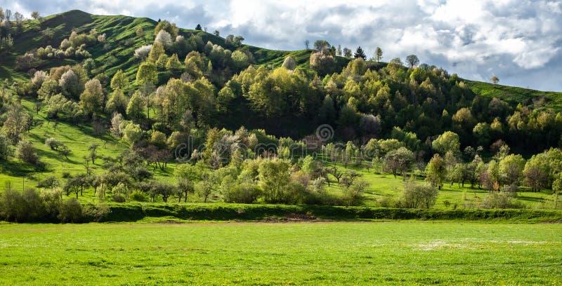Paisaje panorámico que sorprende con la hierba verde, las colinas y los árboles, tiempo soleado, cielo nublado foto de archivo