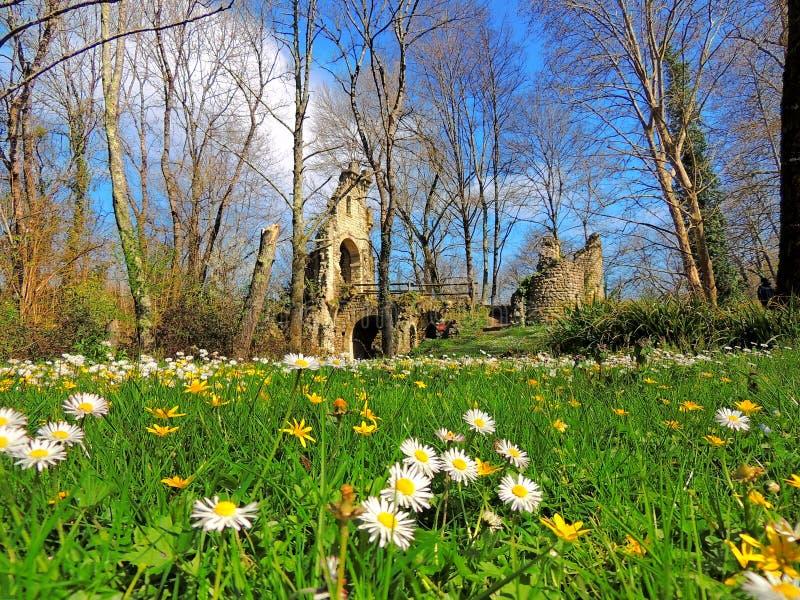 Paisaje pintoresco con las flores y las ruinas antiguas imágenes de archivo libres de regalías