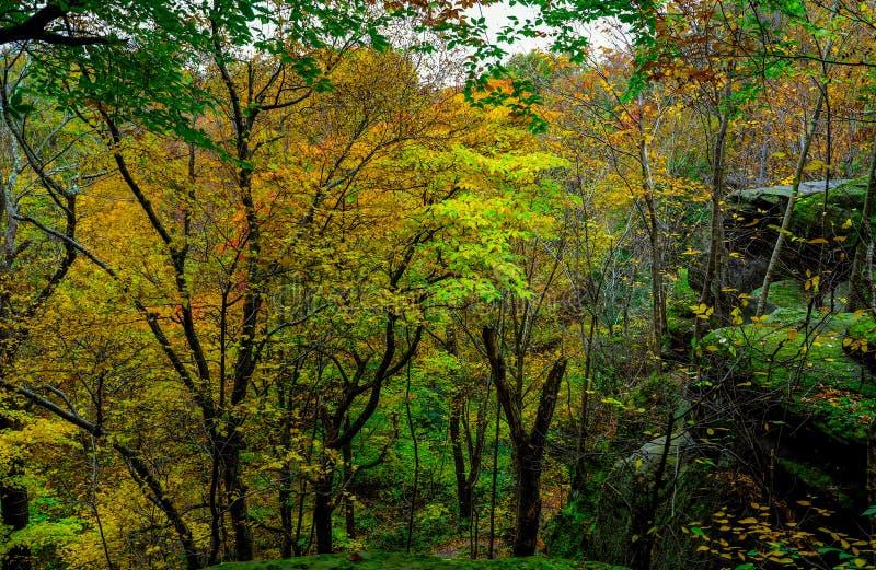 Paisaje pintoresco del otoño fotos de archivo