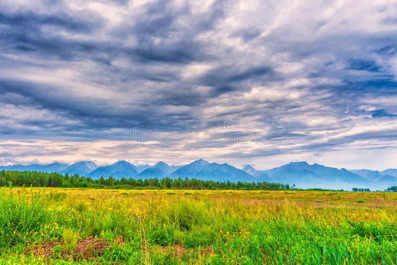 Paisaje pintoresco del verano de la cordillera con los picos, del valle con la hierba verde, de la arboleda y del cielo nublado F foto de archivo libre de regalías