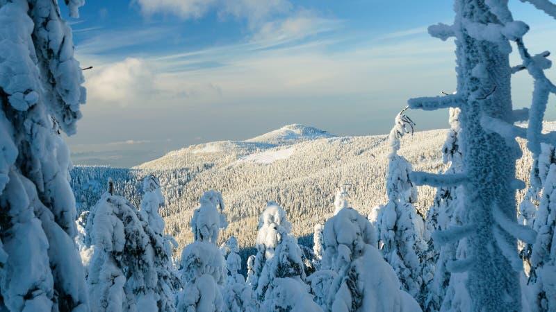 Paisaje polaco del invierno en las montañas, los árboles nevosos y los caminos imagenes de archivo