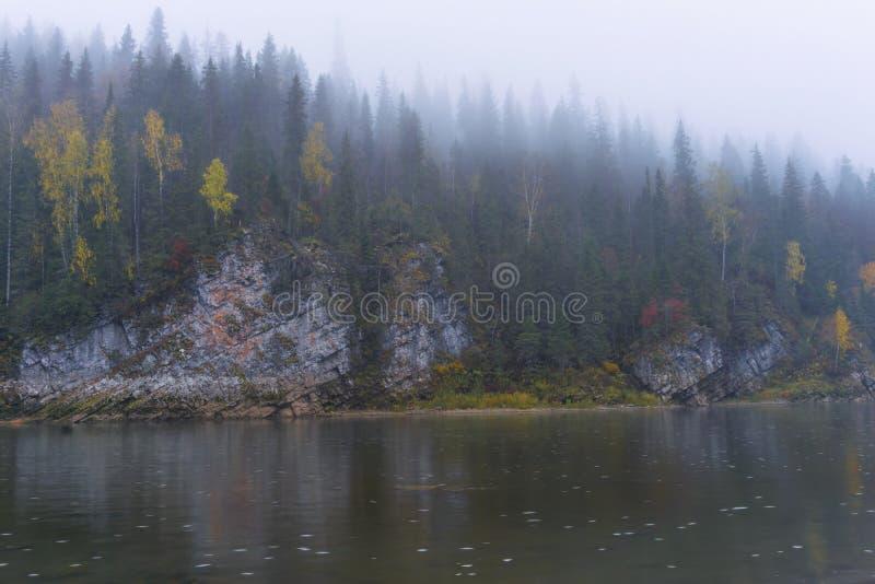 Paisaje - río del bosque de la montaña en la niebla imagenes de archivo