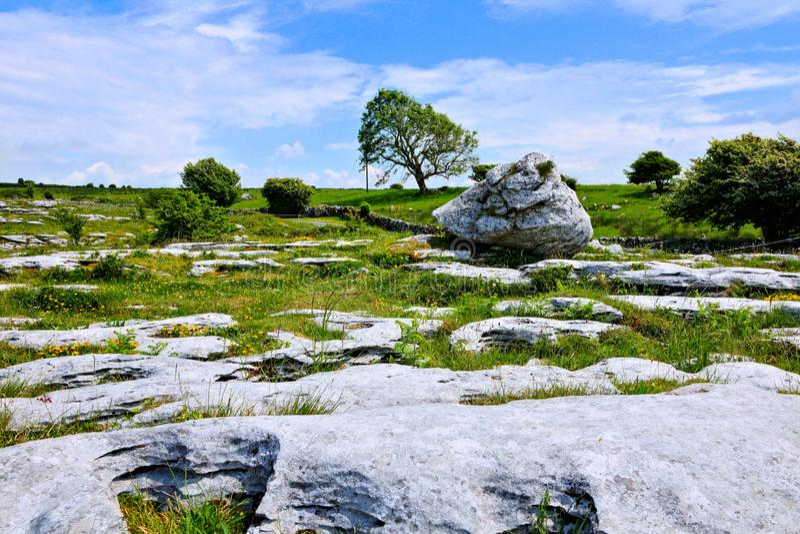 Paisaje rocoso del Burren con los campos del canto rodado y de la piedra caliza, Irlanda foto de archivo