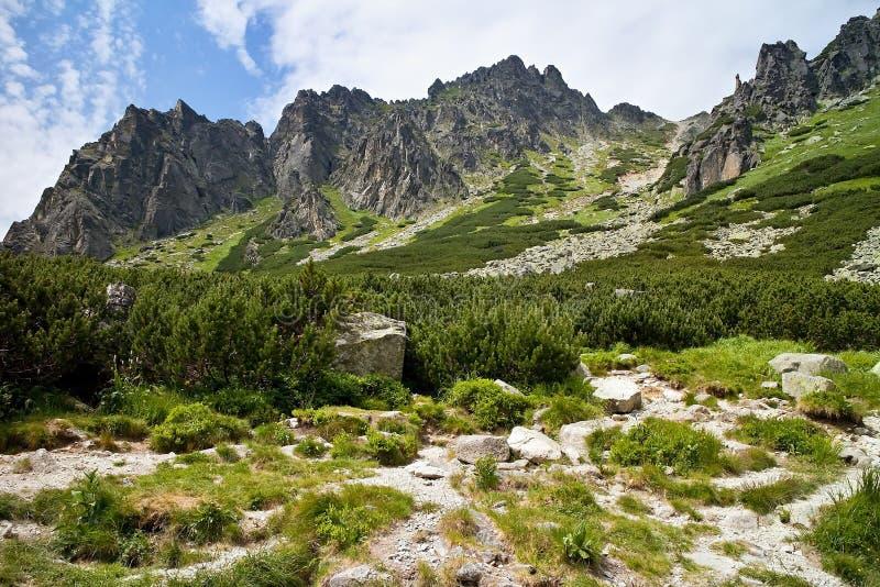 Paisaje rocoso interesante como usted sube la pista de senderismo a la cascada de Skok en el alto Tatras fotos de archivo