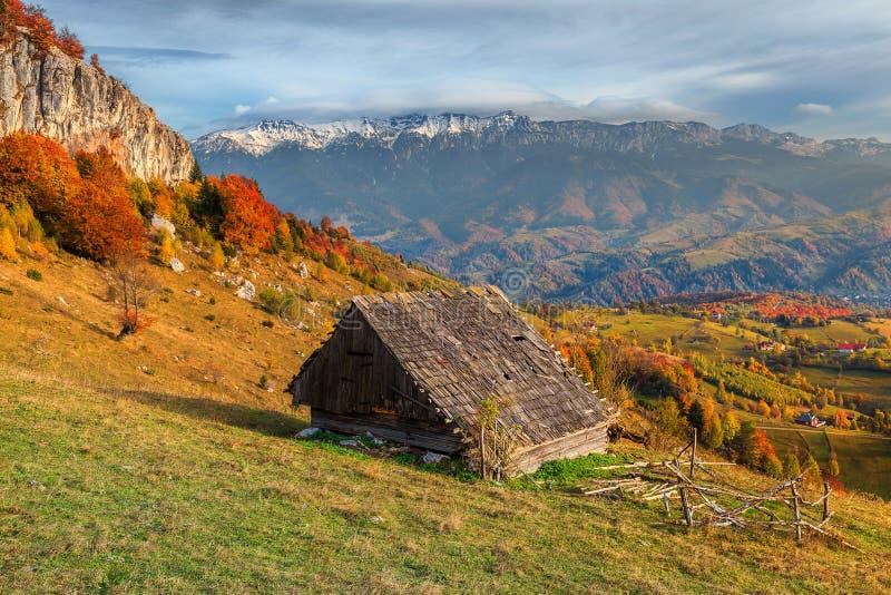 Paisaje rural alpino del otoño espectacular cerca de Brasov, Transilvania, Rumania, Europa imagen de archivo