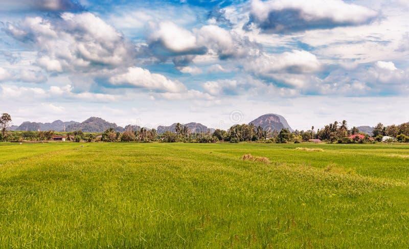 Paisaje rural cerca de la frontera con Tailandia en Wang Kelian imagen de archivo