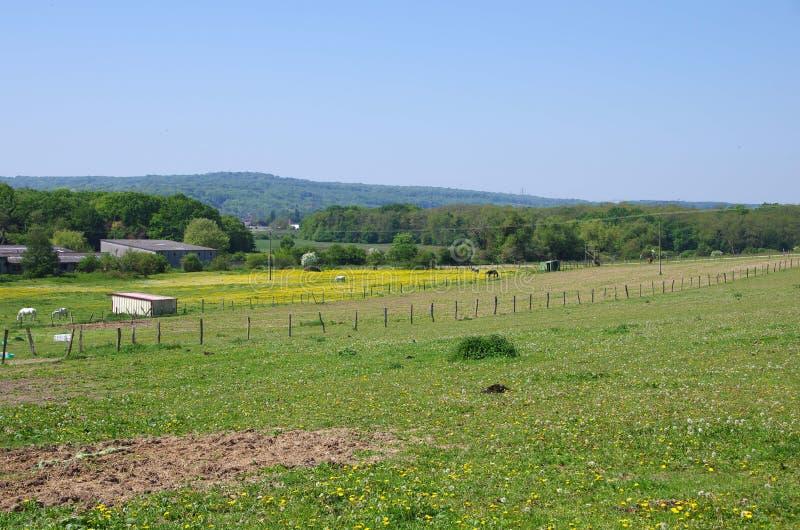 Paisaje rural cerca de Viarmes en Francia, Europa imágenes de archivo libres de regalías