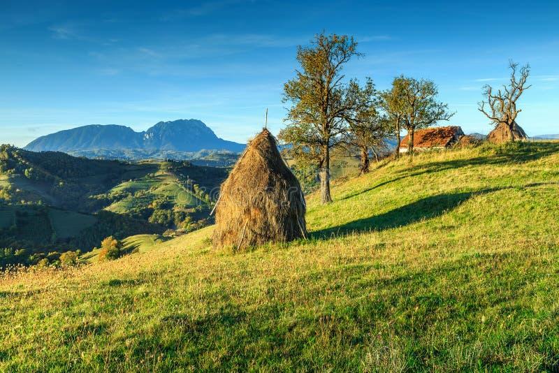 Paisaje rural con las balas de heno, Holbav, Transilvania, Rumania, Europa del otoño fotos de archivo libres de regalías