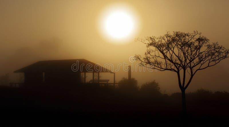 Paisaje rural de la salida del sol de niebla de la mañana foto de archivo libre de regalías