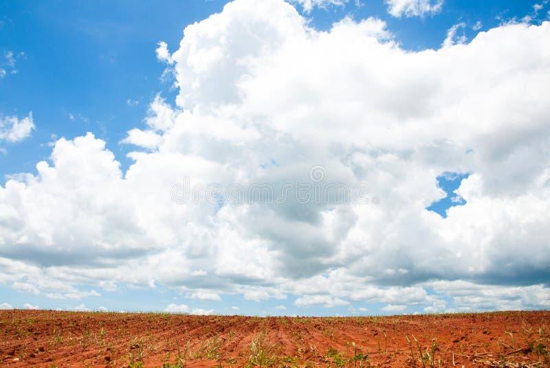 Paisaje rural de las tierras de labrantío desnudas con un cielo hermoso arriba fotografía de archivo libre de regalías