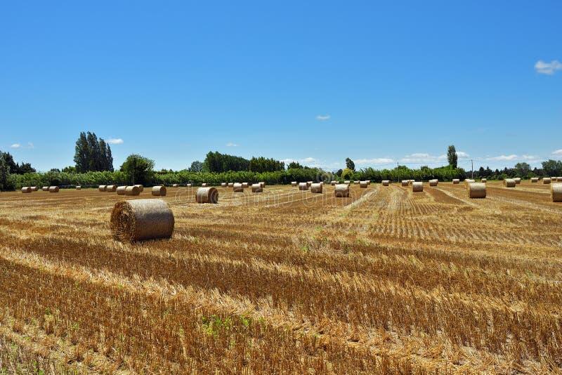 Paisaje rural de Provence, Francia fotografía de archivo libre de regalías