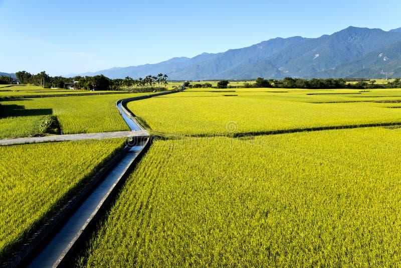 Paisaje rural de Taiwán fotos de archivo libres de regalías