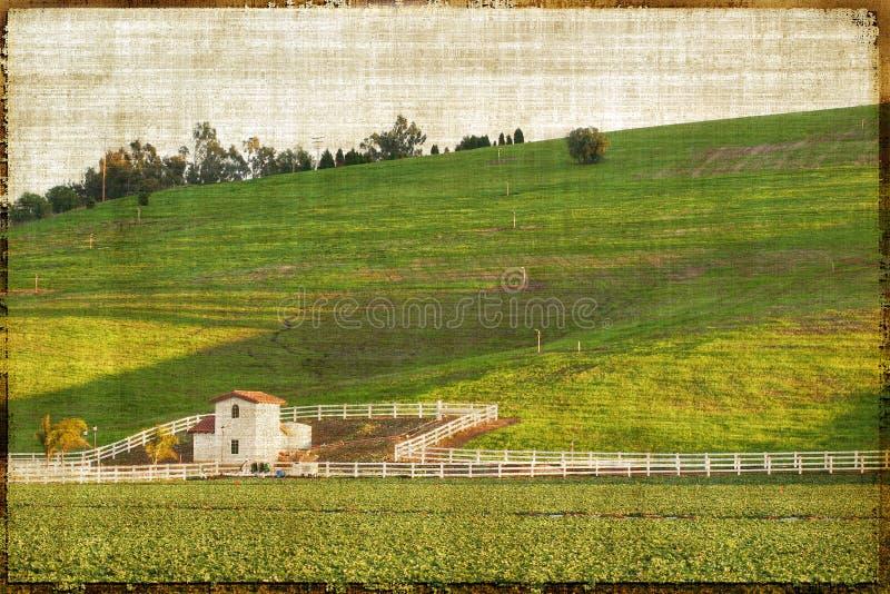 Paisaje rural del estilo de la vendimia fotos de archivo libres de regalías