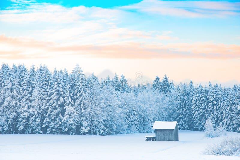 Paisaje rural del invierno de la madrugada con el bosque nevado imagenes de archivo