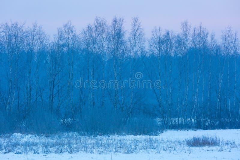 Paisaje rural del invierno típico polaco imágenes de archivo libres de regalías
