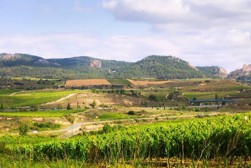 Download Paisaje rural en La Rioja foto de archivo. Imagen de plantación - 42433626