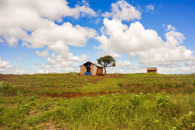 Paisaje rural en Tanzania imágenes de archivo libres de regalías