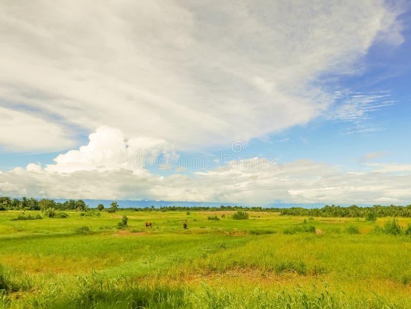 Paisaje rural en Tanzania fotografía de archivo