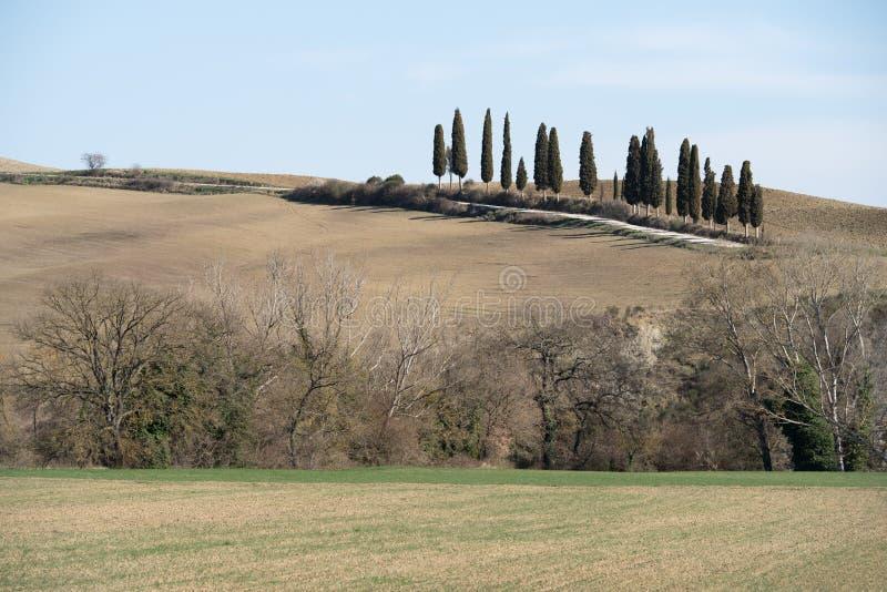 Paisaje rural en Toscana fotografía de archivo libre de regalías