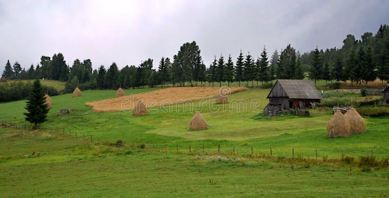 Paisaje rural en Transilvania, montañas cárpatas, prado verde, casa vieja, silencio en el medio de la naturaleza imágenes de archivo libres de regalías