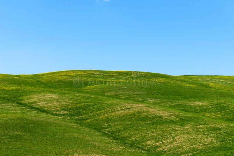 Paisaje rural hermoso, árboles de ciprés, campo verde y cielo azul en Toscana cerca de Pienza Italia fotos de archivo libres de regalías