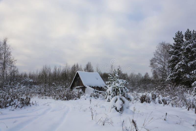 Paisaje rural hermoso en un día nublado del invierno escarchado imagen de archivo