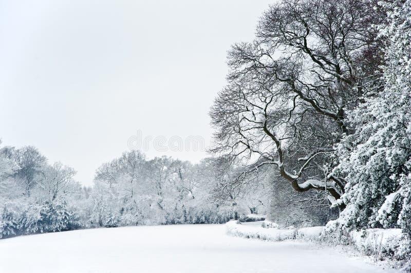 Paisaje rural inglés de la nieve del invierno del campo fotografía de archivo libre de regalías