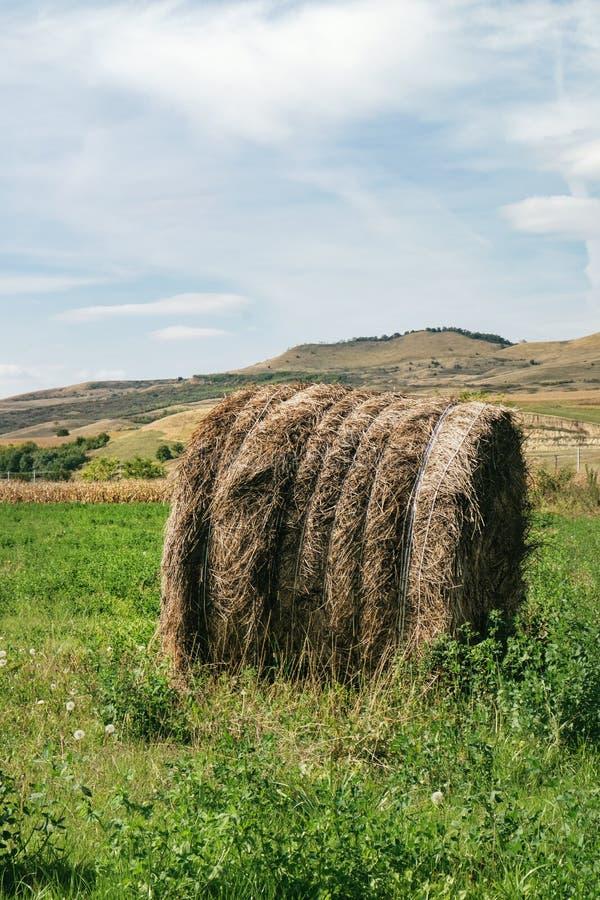 Paisaje rural natural típico de Rumania foto de archivo