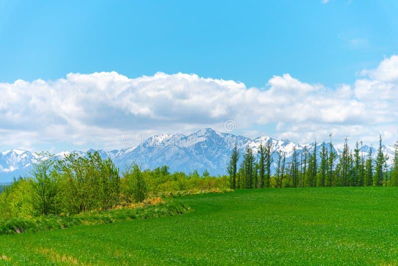Paisaje rural panorámico con las montañas Cielo azul extenso y nubes blancas sobre campo de las tierras de labrantío en un día so imagenes de archivo