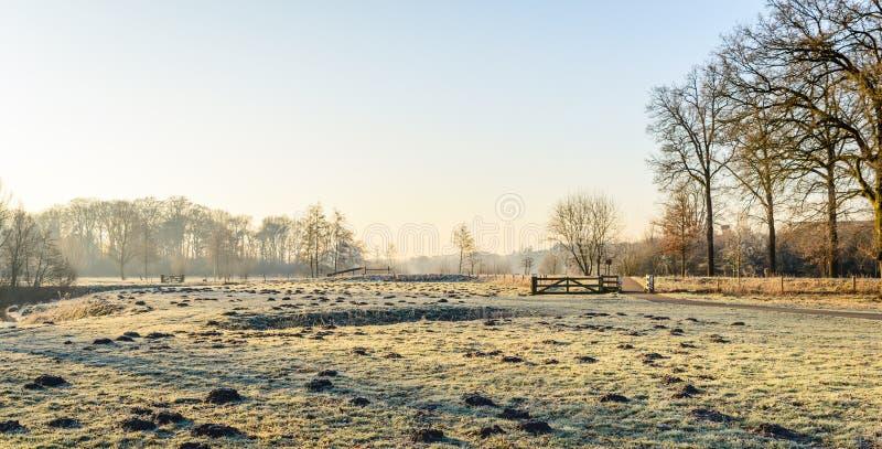 Paisaje rural panorámico del invierno en los Países Bajos fotografía de archivo