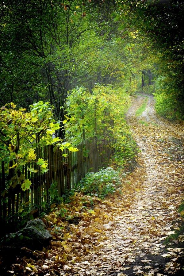 Paisaje rural polaco fotografía de archivo