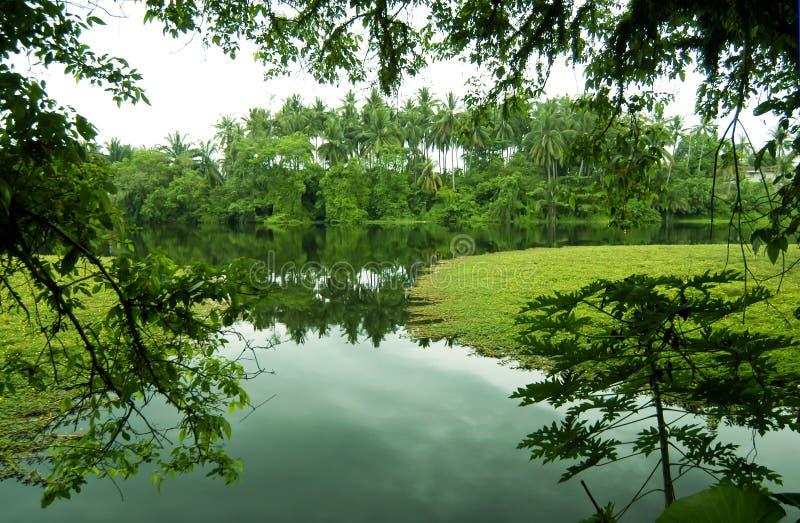 Paisaje rural verde foto de archivo
