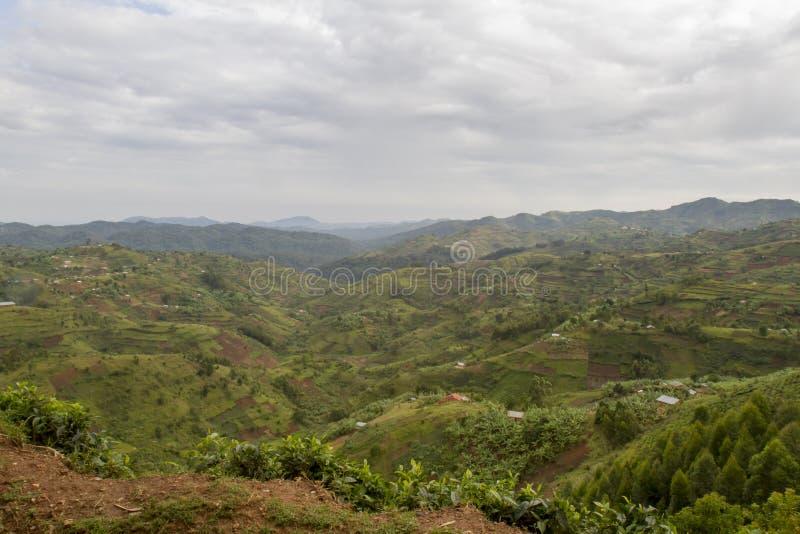 Paisaje Rwanda, África de la ladera fotografía de archivo