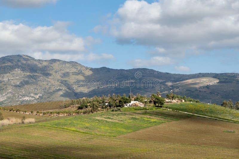 Paisaje siciliano con una pequeña casa blanca, viñedos, colinas, sol y nubes fotografía de archivo libre de regalías