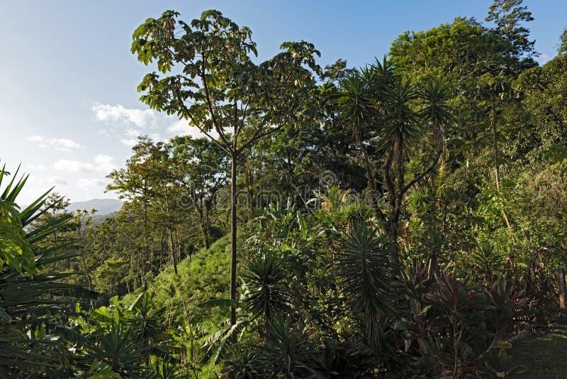 Paisaje sobre el lago Arenal en el La Fortuna, Costa Rica foto de archivo libre de regalías