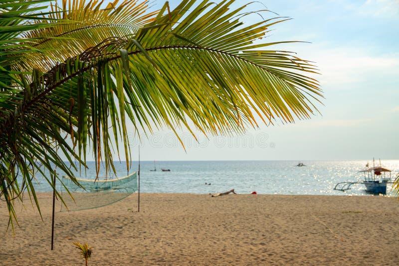 Paisaje soleado de la playa con la red y la hoja de palma del voleibol Opinión tropical del día de la isla Paisaje marino soleado foto de archivo