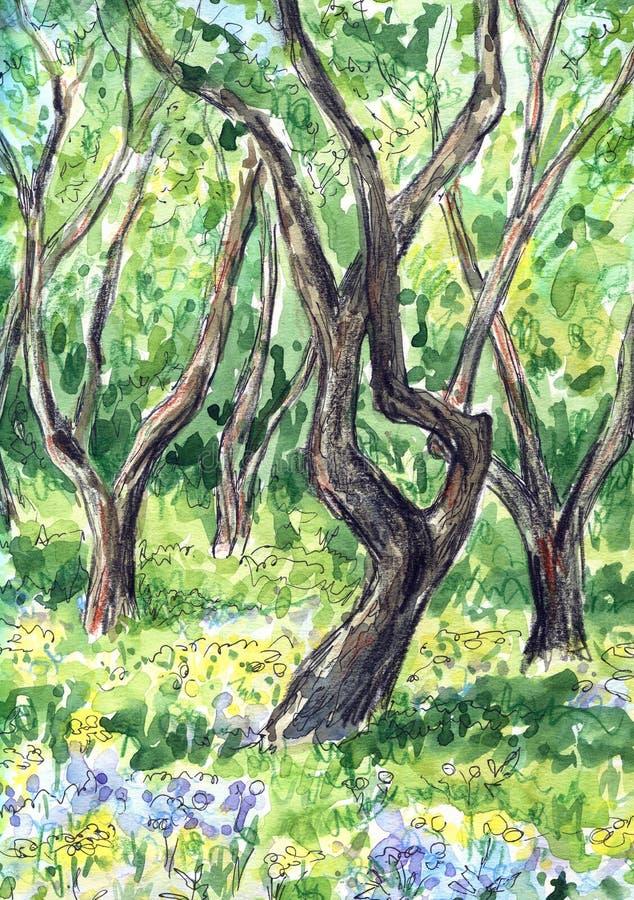 Paisaje soleado del verano o de la primavera con las flores de la American National Standard de los ?rboles Ejemplo dibujado mano libre illustration