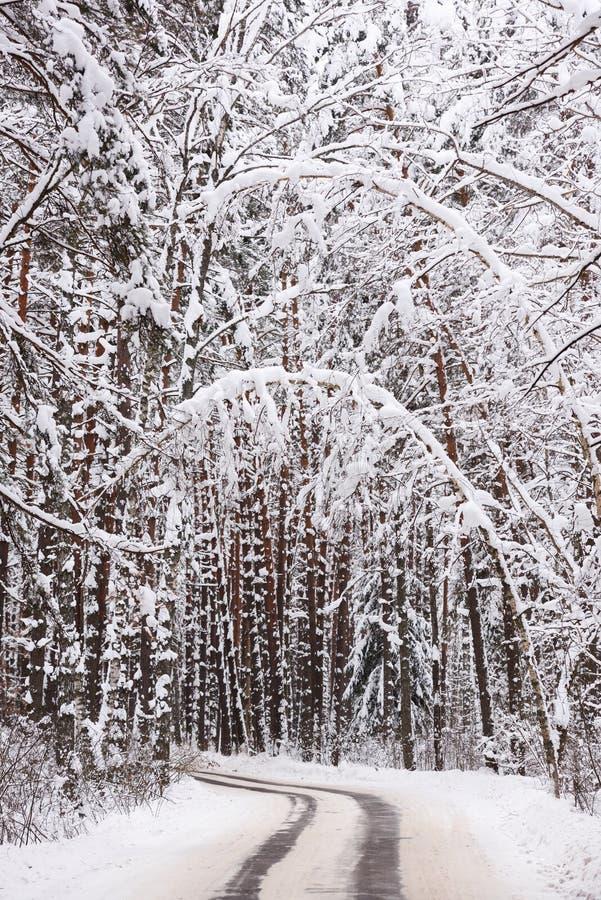 Paisaje sombrío del invierno Vuelta vacía del camino en bosque debajo de la nieve fotos de archivo libres de regalías