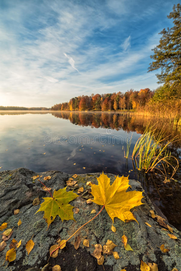 Paisaje sueco del lago del otoño en la visión vertical imagen de archivo