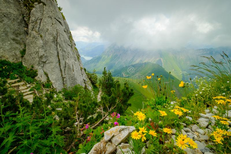 Paisaje típico de Suiza de las montañas del verano imagen de archivo libre de regalías