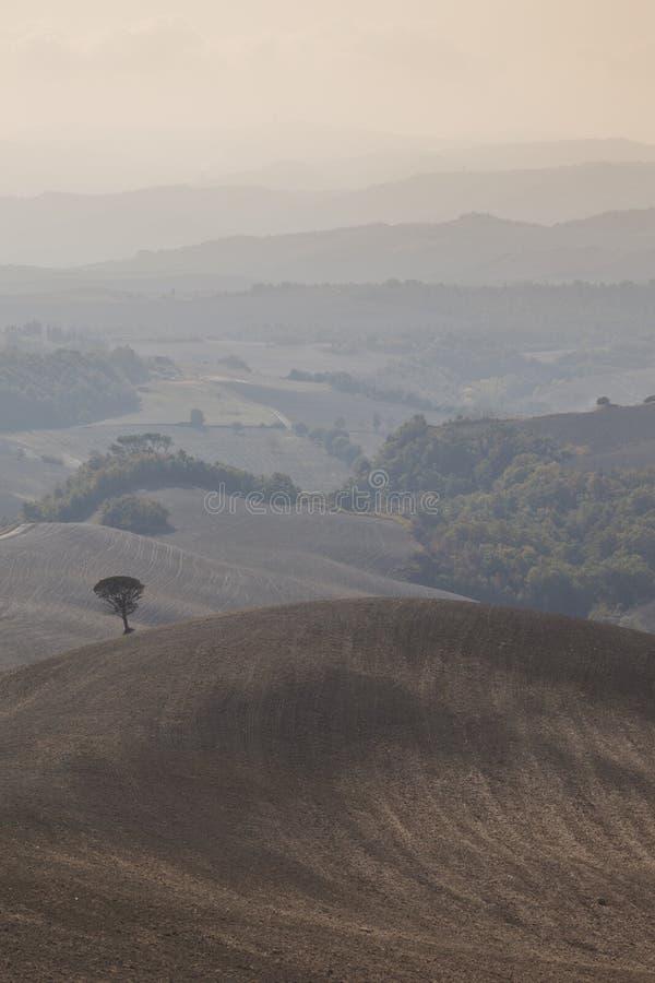 Paisaje típico de Toscana en otoño foto de archivo