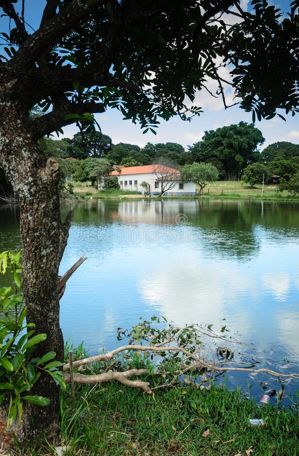 Paisaje típico del campo del Brasil foto de archivo