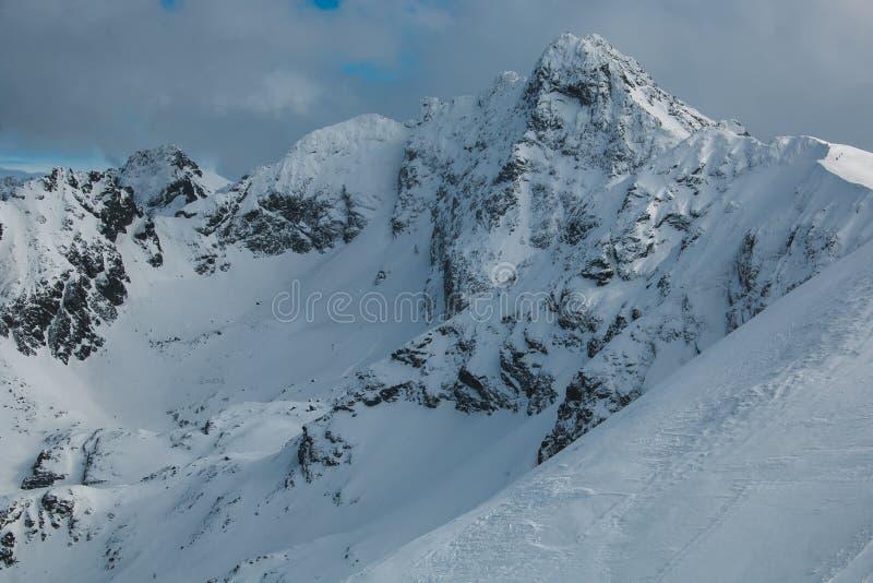 Paisaje típico en las montañas de Cárpatos, Polonia del invierno foto de archivo