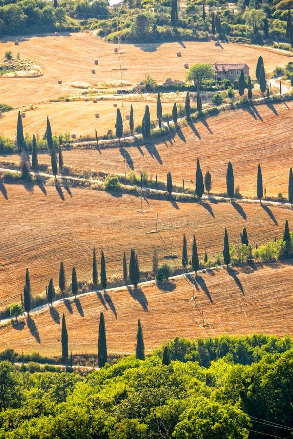 Paisaje típico hermoso de Toscana con filas de cipreses, La Foce, Toscana, Italia foto de archivo